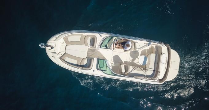 Location bateau Sea Ray Sea Ray 240 Sundeck à Mandelieu-la-Napoule sur Samboat