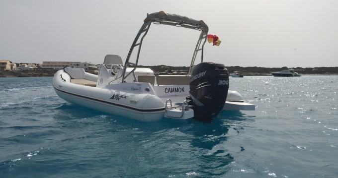 Location bateau La Savina pas cher Blackfin 8 Elegance