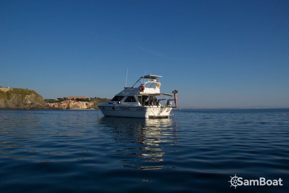 Rental Motor boat Marine-Project with a permit