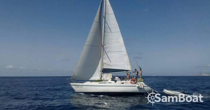 Alquiler Velero Puma con título de navegación