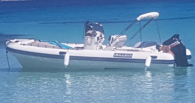Location bateau Saint-Florent pas cher BELUGA 21