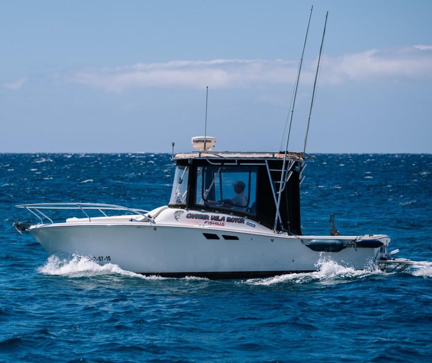 Bootsverleih Kanarische Inseln günstig Tornament open 240