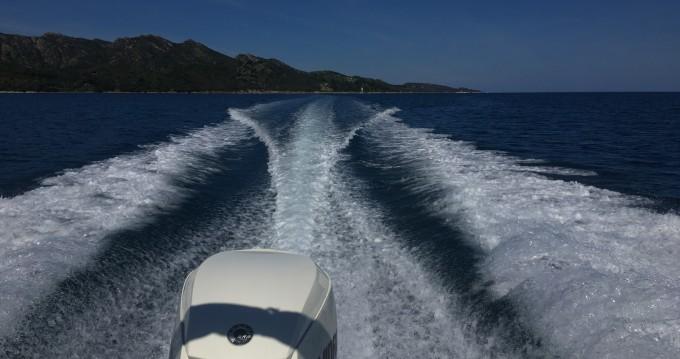 Louez un White Shark Sea Hawk 213 à Saint-Florent