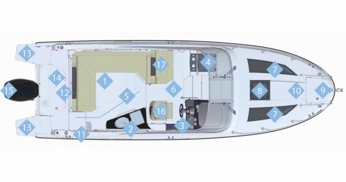 Location Bateau à moteur à Portals Nous - Quicksilver Activ 805 Cruiser