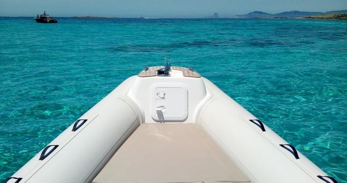 Boat rental Sant Antoni de Portmany cheap Blackfin 8 Elegance