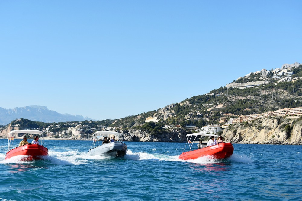 Boat rental Altea cheap Whaly 500