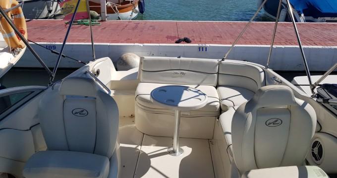 Location Bateau à moteur Sea Ray avec permis