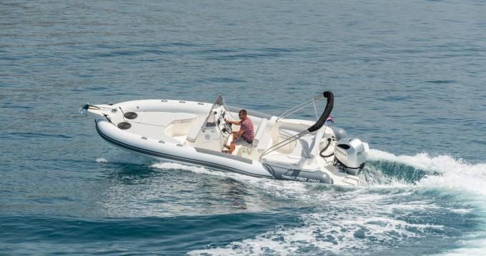 Rental RIB Marlin Boat with a permit