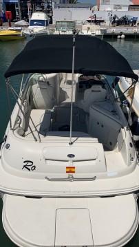 Sea Ray SUNDECK 240 entre particuliers et professionnel à Puerto Deportivo de Marbella