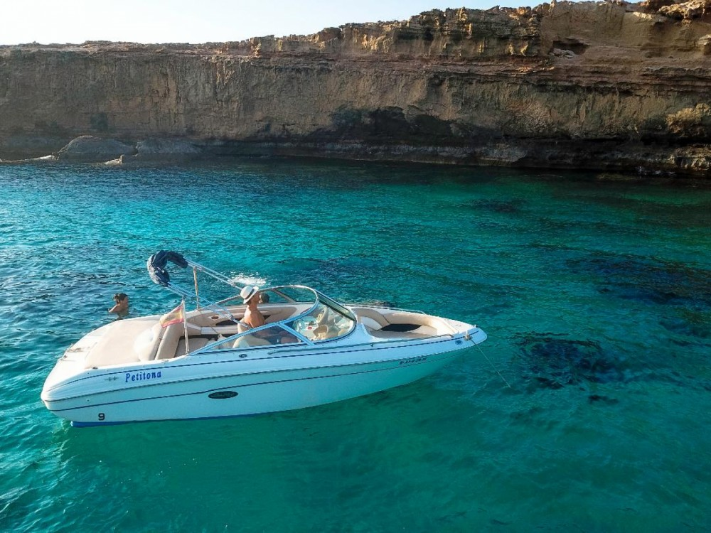 Alquiler Lancha en La Savina - Sea Ray Sea Ray 190 BR