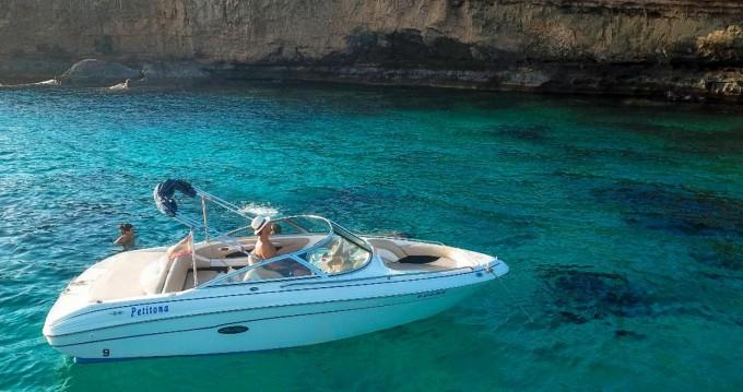 Sea Ray Sea Ray 190 BR entre particuliers et professionnel à La Savina