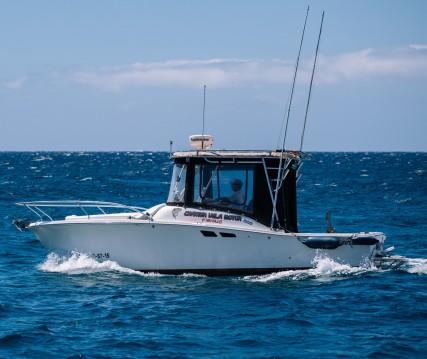Location yacht à Las Galletas - Luhrs Tornament open 240 sur SamBoat
