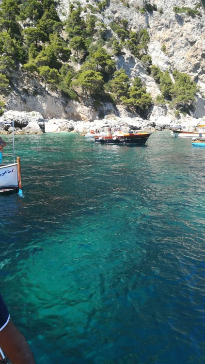 Rental yacht Piano di Sorrento - Southwind2000 southwind 750 sport on SamBoat
