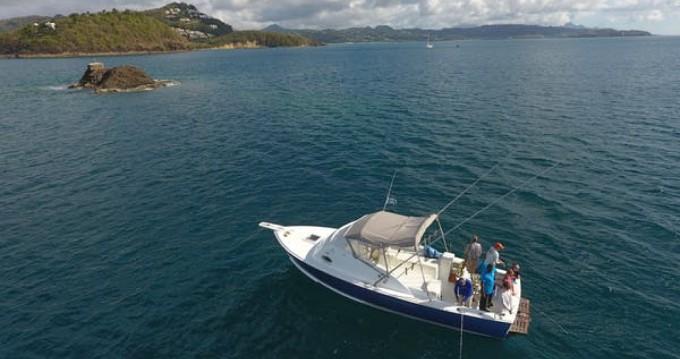 Location bateau Port Castries pas cher Bahia Mar