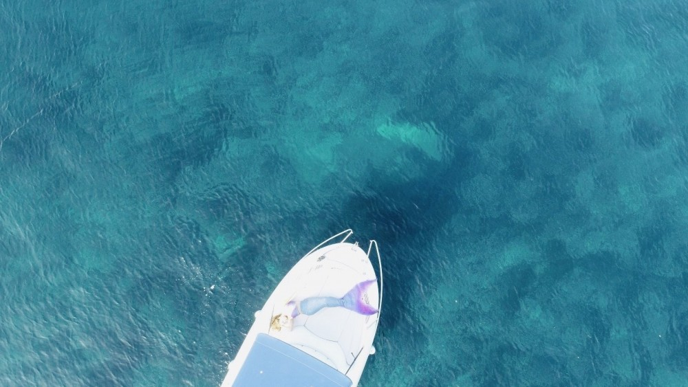 Location yacht à Monaco - Jeanneau Cap Camarat 625 WA sur SamBoat