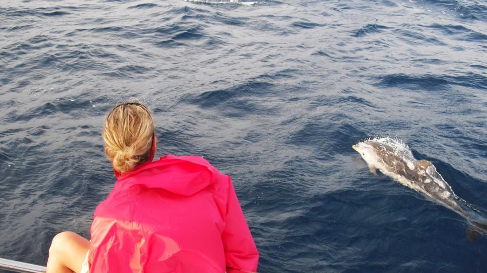 Location bateau Ibiza pas cher Lagoon 380