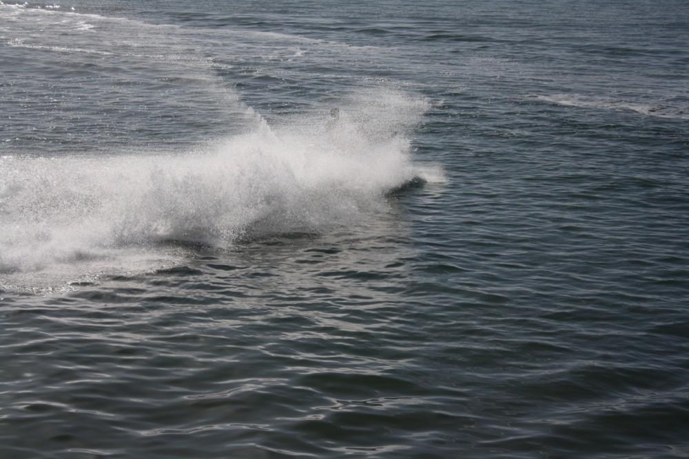 Location yacht à Setúbal - Yamaha vx1100 sur SamBoat
