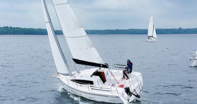Location bateau Wilkasy pas cher Maxus 26 Prestige 7/2