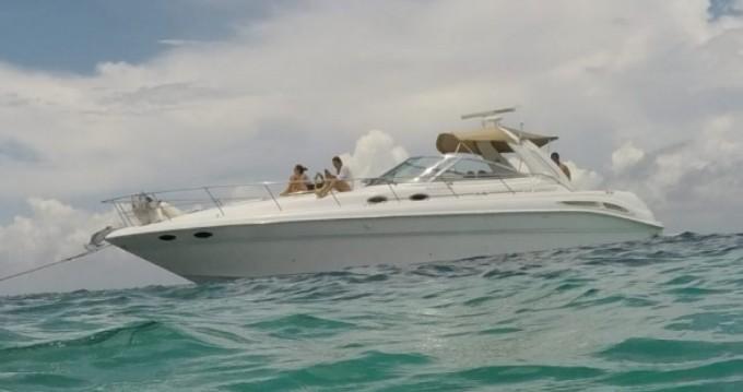 Location bateau Cancún pas cher Sundancer