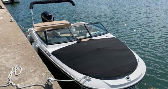 Sea Ray Sea Ray 190 SPX OB entre particuliers et professionnel à Le Barcarès