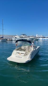 Louez un Sea Ray 260 SD à Puerto Deportivo de Marbella
