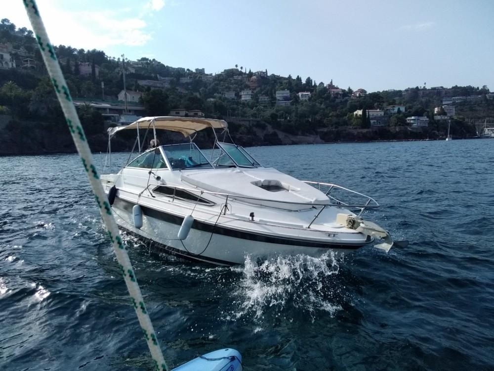 Location bateau Provence-Alpes-Côte d'Azur pas cher Sea Ray 240 Sundancer