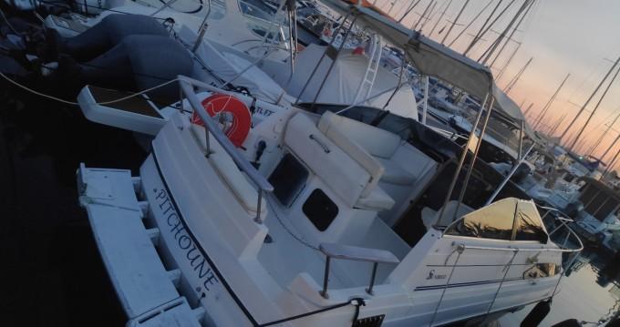 Location yacht à Cannes - Bayliner Sunbridge 2455 sur SamBoat