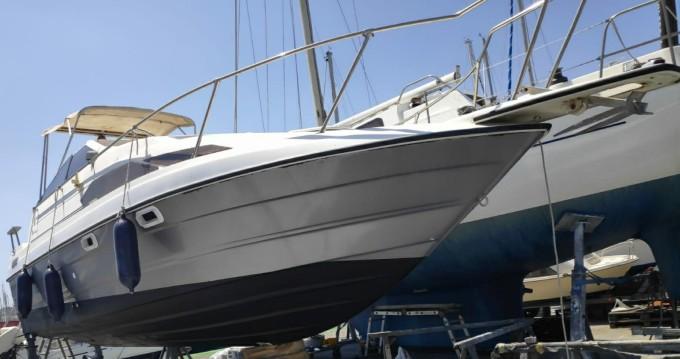 Location bateau Bayliner SUN BRIDGE 2455 à Nice sur Samboat
