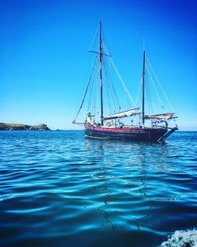 Location bateau chantier banf zulu à Le Marin sur Samboat