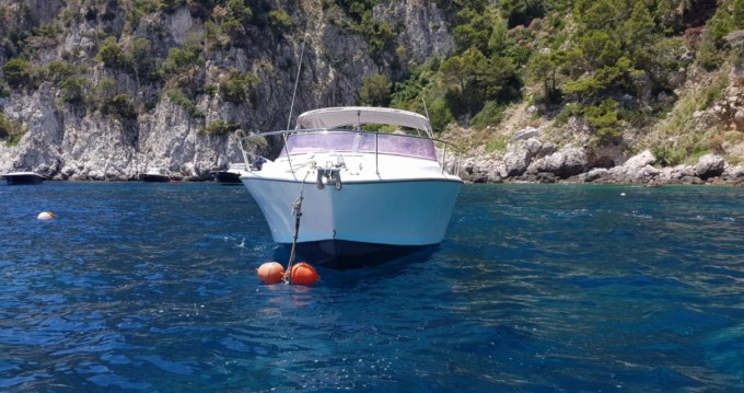 Location bateau Bertram Nord Mare 30' Typo Moppie à Sorrento sur Samboat