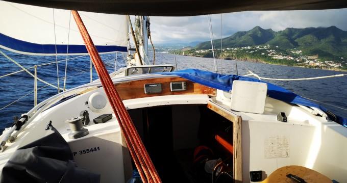 Location yacht à Basse-Terre - Contest Contest 44 sur SamBoat