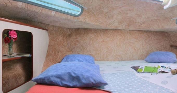 Location bateau Brienon-sur-Armançon pas cher Sedan 1010