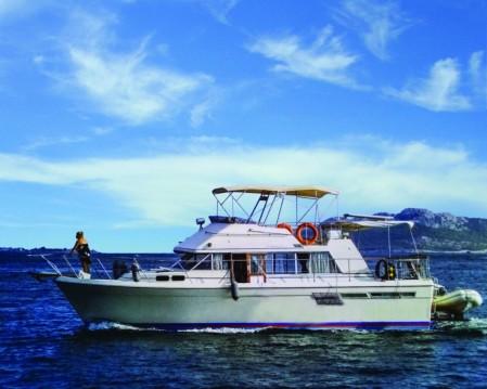 Bayliner Bodega 43 entre particuliers et professionnel à Mykonos (Île)
