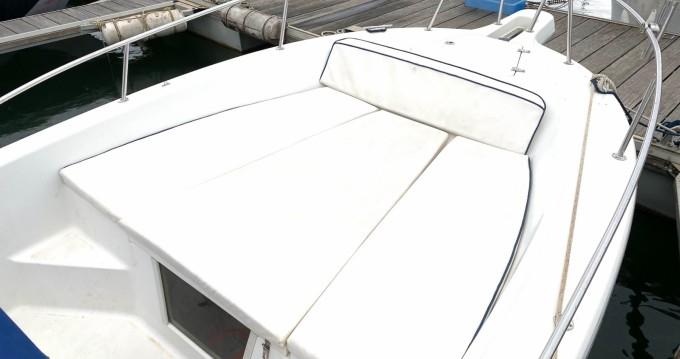 Location bateau Kelt WHITE SHARK 225 à Argelès-sur-Mer sur Samboat