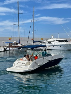 Sea Ray Sea Ray 260 SD Blue entre particuliers et professionnel à Puerto Deportivo de Marbella