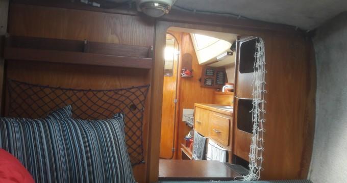 Location bateau Gravelines pas cher Biloup 77