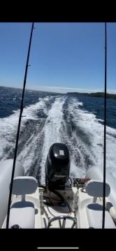 Location bateau Zodiac Pro 550 Open à Brest sur Samboat