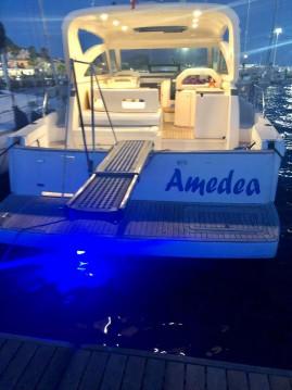 Louez un Cnt cayman38wa à Golfo Aranci
