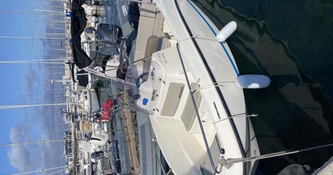 Location bateau Quicksilver Activ 505 Open à Pointe-Rouge sur Samboat