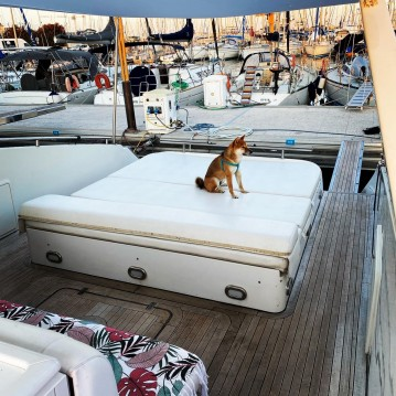 Location bateau Antibes pas cher Monte Carlo 55
